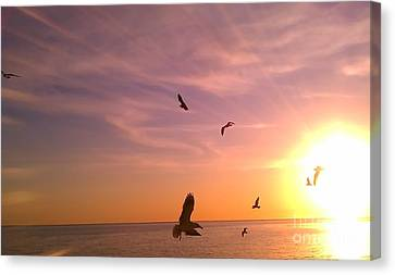 Canvas Print featuring the photograph Flight Into The Light by Chris Tarpening