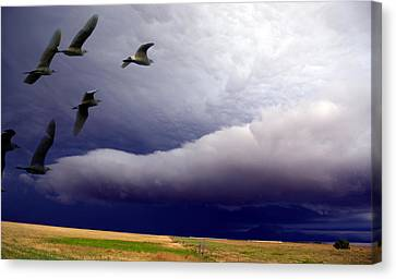 Canvas Print featuring the photograph Flight Into The Storm by Yvonne Emerson AKA RavenSoul