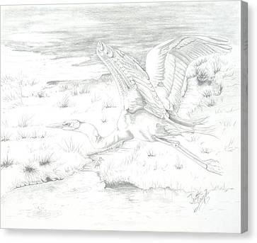 Flight Of Grace Canvas Print by Joette Snyder