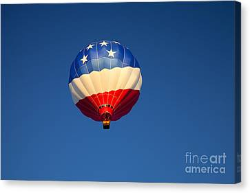 Flight Of The Patriot Canvas Print by Mike  Dawson