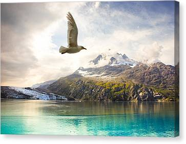 Canvas Print featuring the photograph Flight Over Glacier Bay by Janis Knight