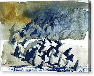 Flight Pattern 2-16-15 By Julianne Felton Canvas Print