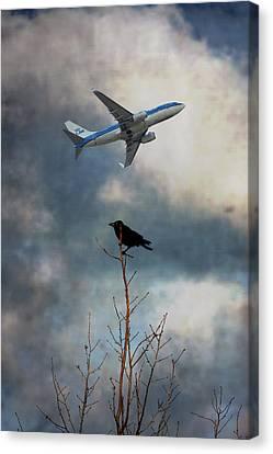 Flight Canvas Print