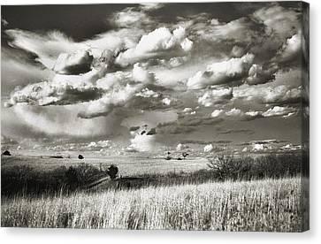 Flint Hills Prairie Canvas Print by Thomas Bomstad