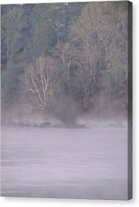 Canvas Print featuring the pyrography Flint River 10 by Kim Pate