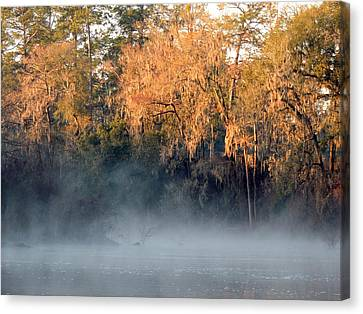Canvas Print featuring the photograph Flint River 14 by Kim Pate