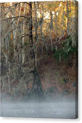 Canvas Print featuring the photograph Flint River 15 by Kim Pate