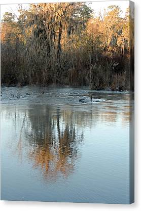 Canvas Print featuring the photograph Flint River 17 by Kim Pate