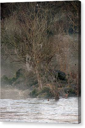 Canvas Print featuring the photograph Flint River 19 by Kim Pate