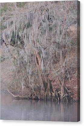 Canvas Print featuring the photograph Flint River 2 by Kim Pate