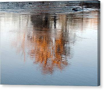 Canvas Print featuring the photograph Flint River 22 by Kim Pate