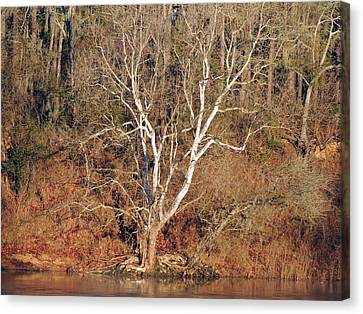 Canvas Print featuring the photograph Flint River 25 by Kim Pate