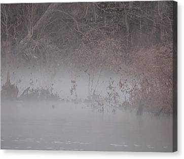 Canvas Print featuring the photograph Flint River 7 by Kim Pate