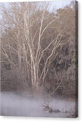 Canvas Print featuring the photograph Flint River 9 by Kim Pate
