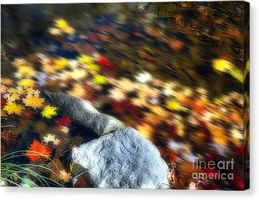 Floating Colors Canvas Print by George Oze