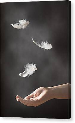 Floating Girl Canvas Print - Floating Feathers by Amanda Elwell