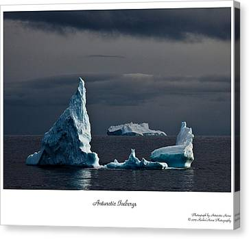 Floating Giants Canvas Print by David Barringhaus