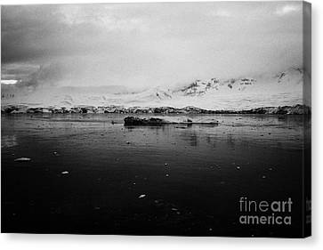 floating ice and snow covered landscape in Fournier Bay on Anvers Island Antarctica Canvas Print by Joe Fox