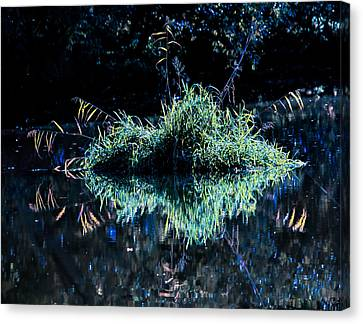 Floating Island Canvas Print by Leif Sohlman