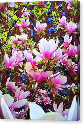 'floating Petals' Canvas Print