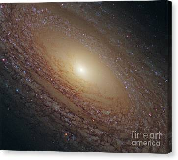 Flocculent Spiral Galaxy Ngc 2841 Canvas Print by Science Source