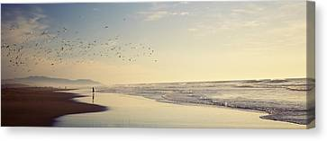 Flock Of Seagulls Flying Above A Woman Canvas Print