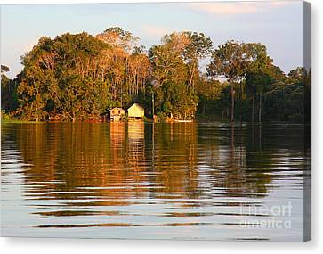 Canvas Print featuring the photograph Flooded Amazon With Houses by Nareeta Martin