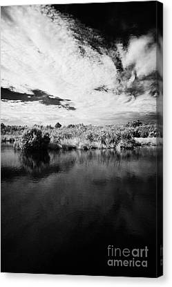 Flooded Grasslands And Mangrove Forest In The Florida Everglades Canvas Print