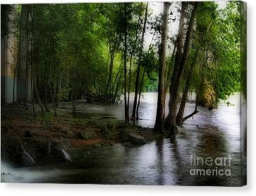 Flooding On The Saluda Canvas Print by Skip Willits