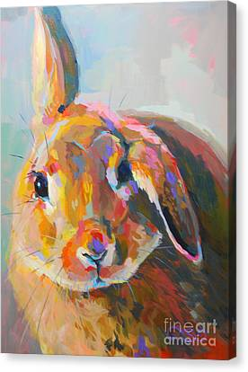 Flopsy Canvas Print by Kimberly Santini
