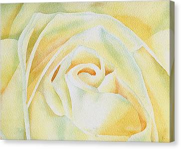 Flor De Merengue Canvas Print by Thomas Habermann