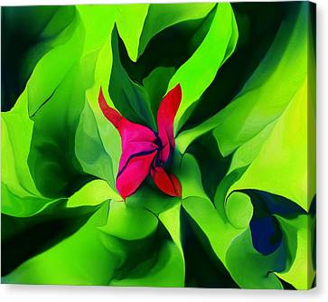 Canvas Print featuring the digital art Floral Abstract Play by David Lane