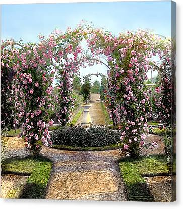 Floral Arch Canvas Print by Terry Reynoldson