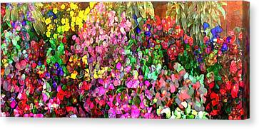 Floral Basket 1  2.4 To 1 Aspect Ratio Canvas Print