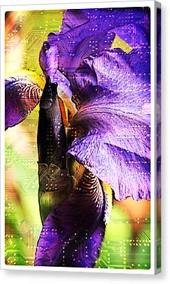 Floral Circuit Canvas Print by Davina Washington