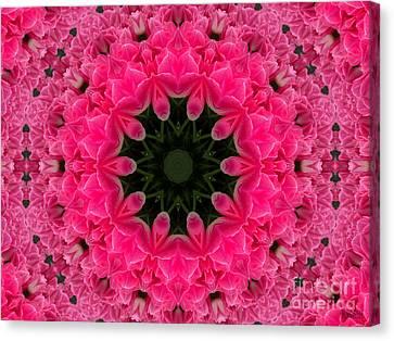 Floral Fantasy - 24 Canvas Print by Hanza Turgul