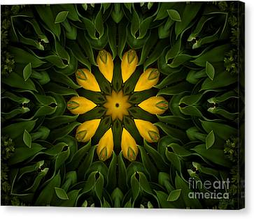 Floral Fantasy - 33 Canvas Print by Hanza Turgul