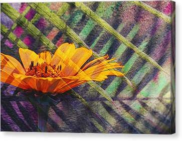 Barbara Smith Canvas Print - Floral Fantasy I by Barbara Smith