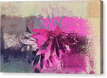 Floral Fiesta - S31at01b Canvas Print by Variance Collections