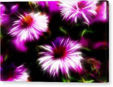 Canvas Print featuring the photograph Floral Fireworks by Selke Boris