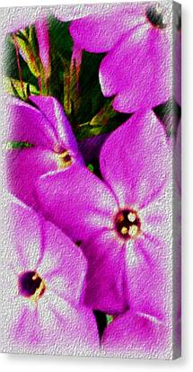 Floral Fun 012714 Canvas Print