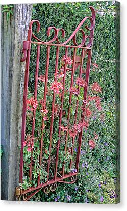 Floral Garden Gate Canvas Print by Linda Phelps