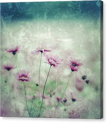 Floral Grunge Canvas Print by Amanda Lakey