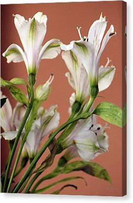 Floral Highlights Canvas Print