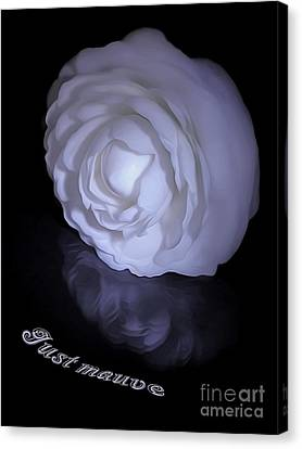 Floral Reflections 4 - Camellia Canvas Print by Kaye Menner