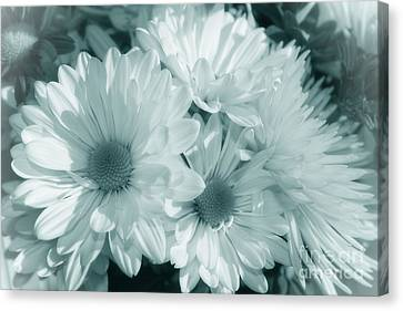 Canvas Print featuring the photograph Floral Serendipity by Cathy  Beharriell