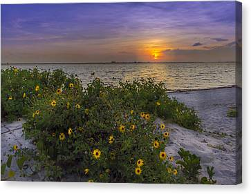 Floral Shore Canvas Print by Marvin Spates