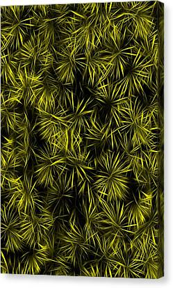 Floral Yellow Abstract Canvas Print by David Dehner