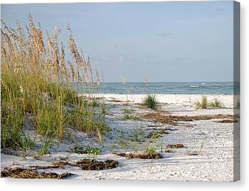 Florida Beach 2 Canvas Print