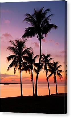 Tropical Sunset Canvas Print - Florida Breeze by Chad Dutson